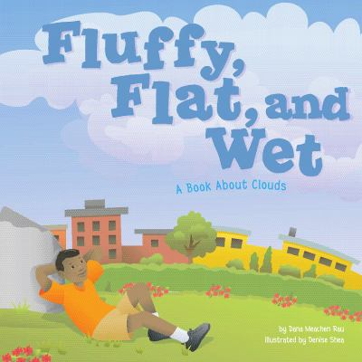 Details about Fluffy, Flat, and Wet: A Book About Clouds
