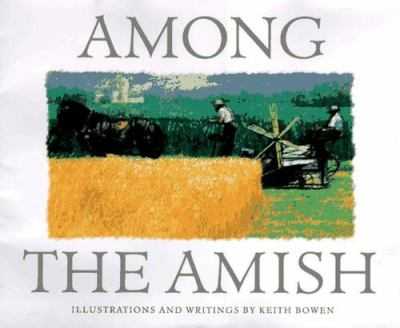 Details about Among the Amish