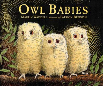 Details about Owl Babies