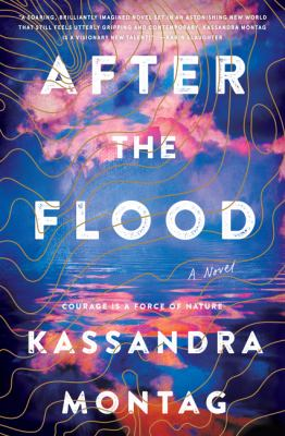 Details about After the Flood