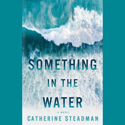 Details about Something in the Water: A Novel (sound recording)