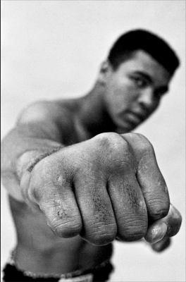 Details about Ali: A Life