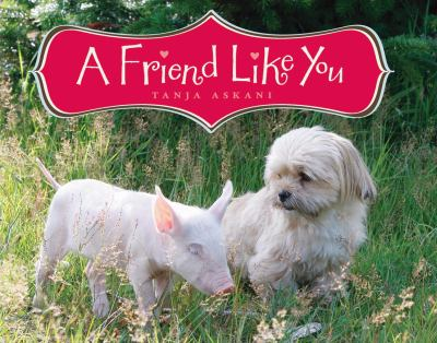 Details about A Friend Like You