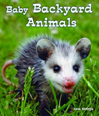 Details about Baby Backyard Animals