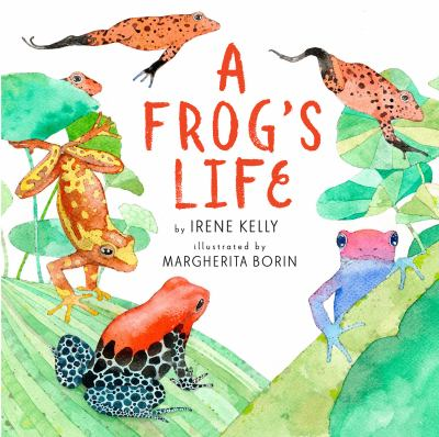Details about A Frog's Life