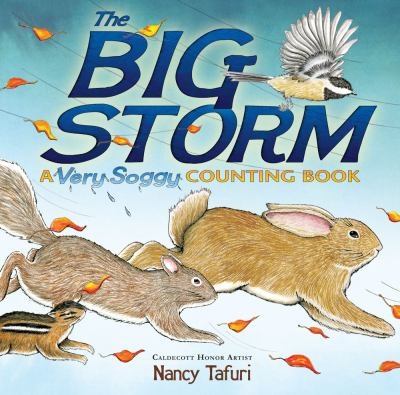 Details about The Big Storm : A Very Soggy Counting Book
