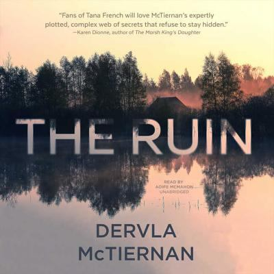 Details about The Ruin: A Novel (sound recording)