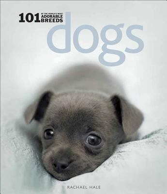 101 adorable breeds dogs