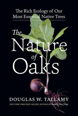 The nature of oaks : by Tallamy, Douglas W.,