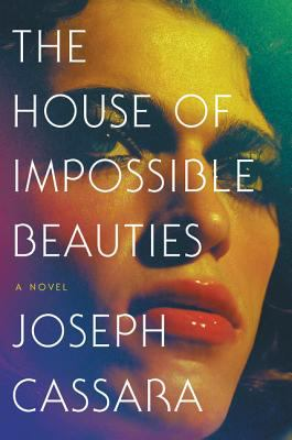 Book cover for The house of impossible beauties.
