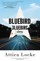 Cover image for Bluebird, bluebird : a novel