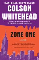 Book cover for Zone One
