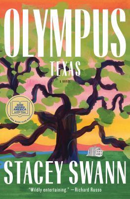 Olympus, TX : a novel