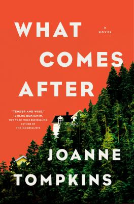 What comes after / by Tompkins, JoAnne,