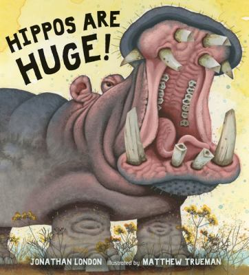 Hippos are huge