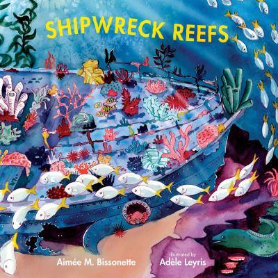 Shipwreck reefs