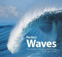 Book cover for Perfect Waves