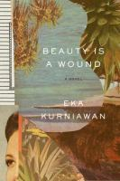 Beauty is a Wound book cover