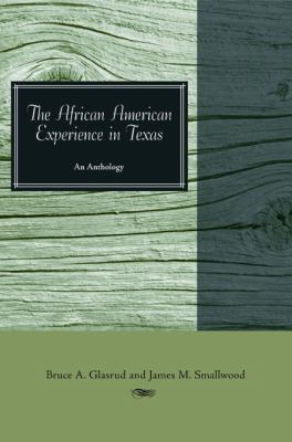 Book cover for The African American experience in Texas.