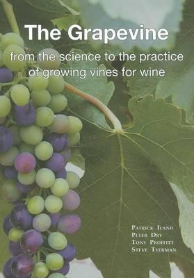 The grapevine : from the science to the practice of growing vines for wine