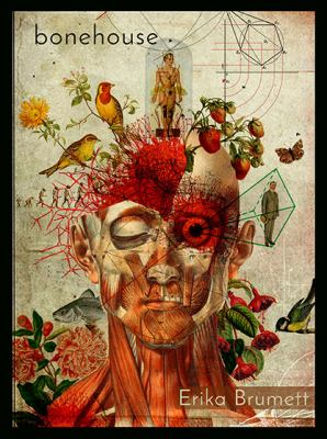 Artistic painting of the anatomy of the human skull decorated with flowers and birds