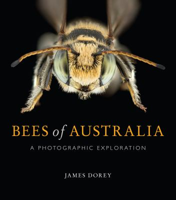 Bees of Australia : A Photographic Exploration