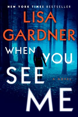 When You See Me (A Detective D.D. Warren novel #11) book cover