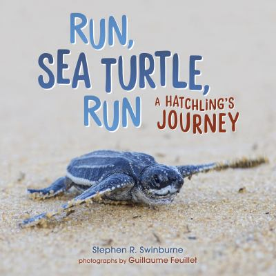 Run, sea turtle, run : a hatchling