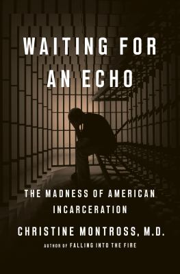 Waiting for an echo : the madness of American incarceration