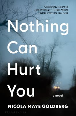 Nothing Can Hurt You book cover