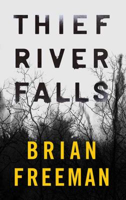 Thief River Falls - February