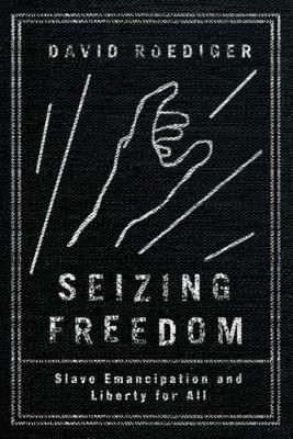 Book cover for Seizing freedom.