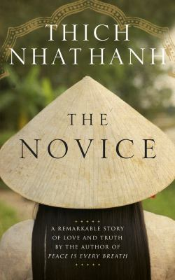Novice Story cover art