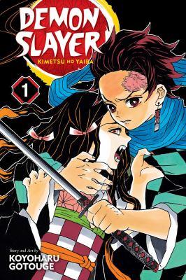 Demon Slayer Volume 1