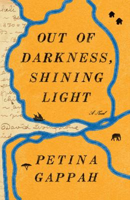 Out of Darkness, Shining Light book cover