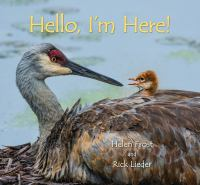 book jacket for Hello, I'm Here!