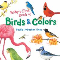 book jacket for Baby's First Book of Birds and Colors