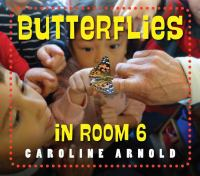 book jacket for Butterflies in Room 6: See How They Grow