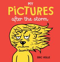 book jacket for My Pictures After the Storm