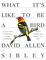 from flying to nesting, eating to singing -- what birds are doing, and why by Sibley, David, 1961- author, illustrator.