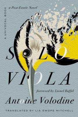 Solo viola : a post-exotic novel